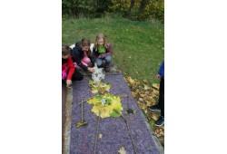 Děti lesa - pobytový tábor