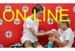 Online kurz ošetření...